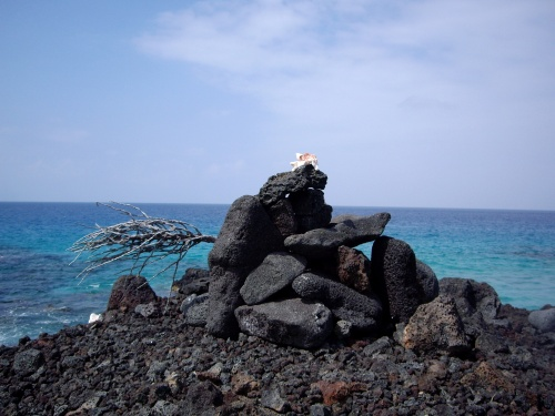 Sculpture out of lava rock, branch, and shell. Kona, Hawaii