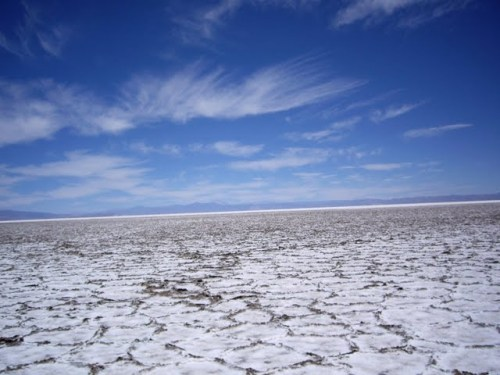 Cracking of the salt flats