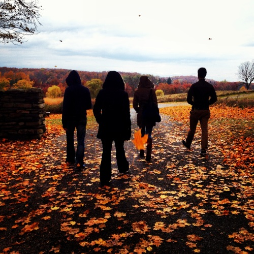 Friends walking while leaves surround them. Storm King Art Center. NY.